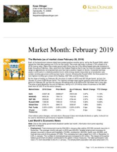 thumbnail of Market Review February 2019
