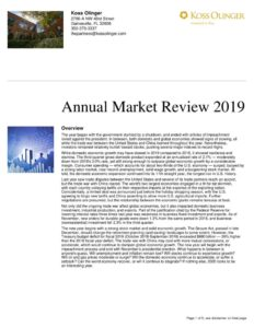 thumbnail of Annual Market Review 2019