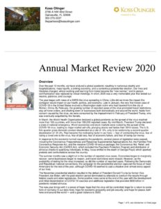 thumbnail of 2020 Annual Market Update